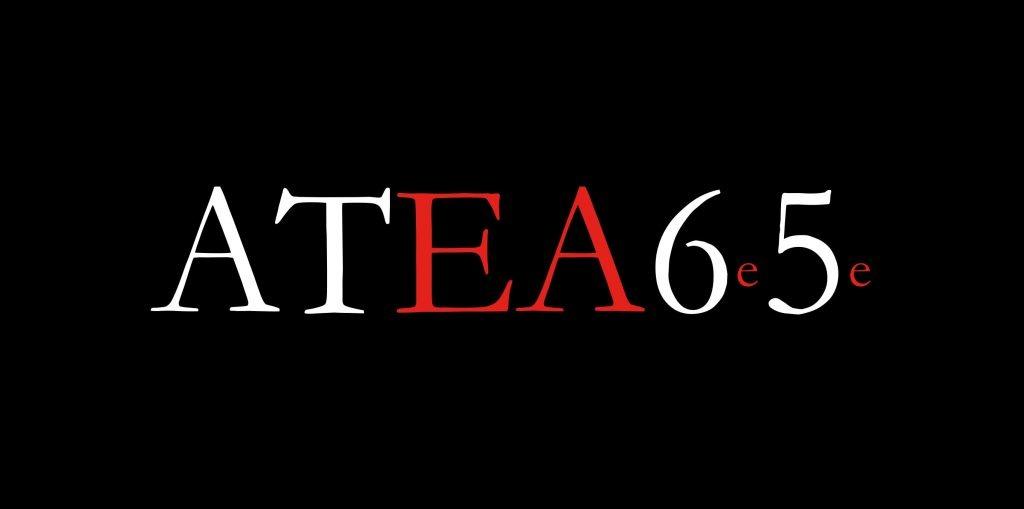 ATEA6e5e
